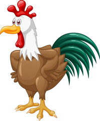 Cute rooster cartoon vector illustration