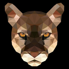 Vector illustration of puma's face consisting of triangles. Polygonal style