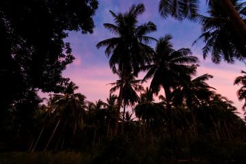 Tropical sunset on Koh Chang