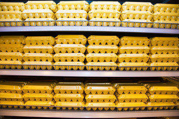 Packaging of eggs in shop