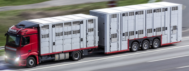 animal transporter truck speeding on a highway
