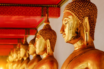 Row Of Buddha statue at Wat Pho, Bangkok Thailand