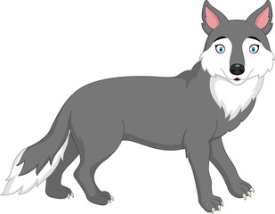 Cartoon wolf isolated on white background
