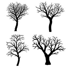 Set of silhouettes of bare trees on a white background.