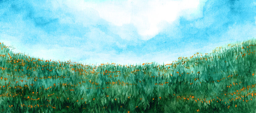 Green grass and yellow flowers on meadow in watercolor
