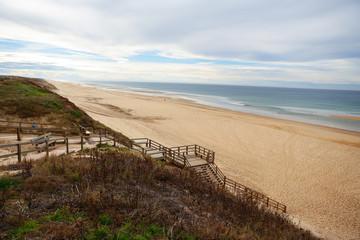 Landes Dunes
