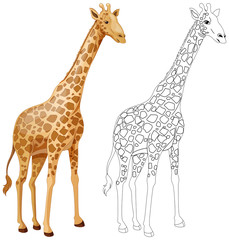 Animal outline for giraffe