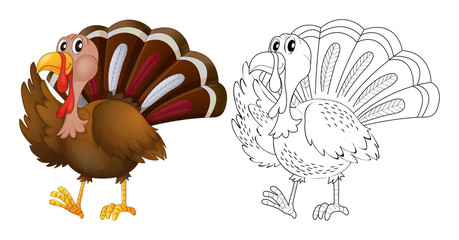 Animal outline for wild turkey