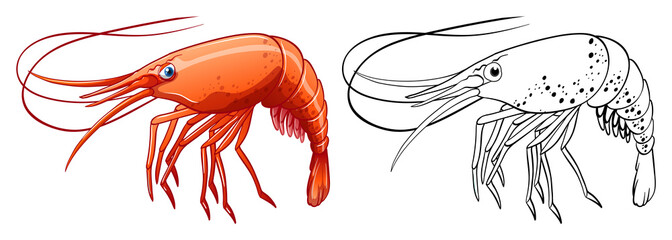 Animal outline for shrimp