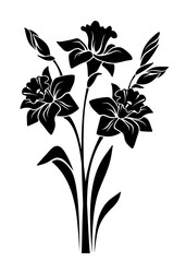 Vector black silhouette of bouquet of narcissus flowers isolated on a white background.