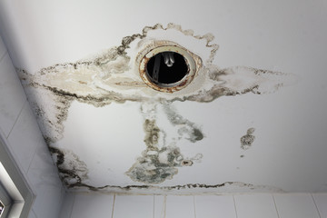 Water leaking from ceiling make damaged lamp
