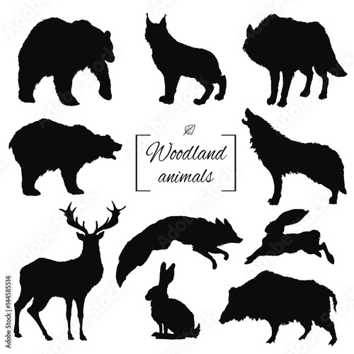 hand drawn silhouette isolated woodland forest animals bear deer