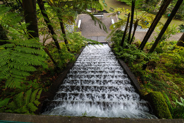 Tropischer Garten Monte Palace Madeira