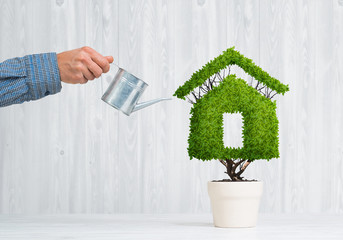 Concept of ecology recycling and eco construction with plant in pot