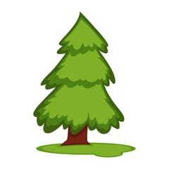 Tall fir tree on piece of grass land vector illustration