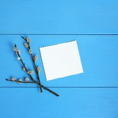 background for Easter greetings/ Twig pussy-willow with a patterned white leaf for inscriptions on a blue wooden table top view