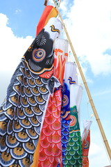 Japanese koi-nobori wind socks
