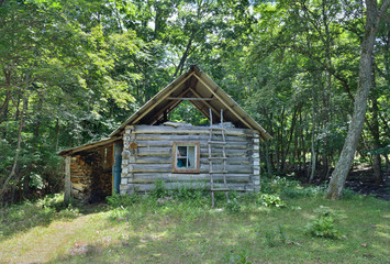 Cabin in forest 2