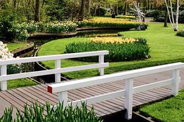 A typical Dutch springtime scene