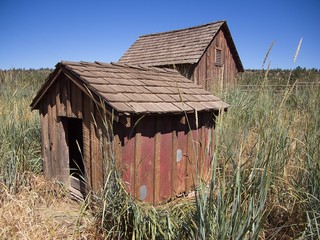 Two staggered farm buildings in the tall grasses of a field in Central Oregon on a sunny summer day.
