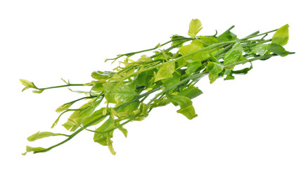 melientha suavis pierre vegetables for cooking.