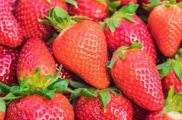 Fototapete - Fresh red strawberries