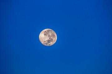 Full moon seen in the Namibian desert.