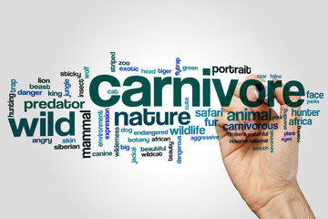 Carnivore word cloud concept on grey background Wall mural