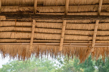 Thatched roof, inside and detailed of a thatched roof