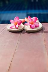 Slippers Pink Frangipani Swimming Pool