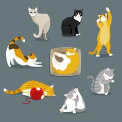 cute cats flat design illustration set