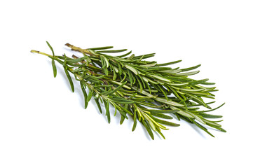 A beam of green rosemary branches isolated on white background.