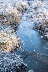 Eine dicke Eisschicht überzieht das Moor