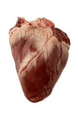 raw lamb heart, isolated on white background