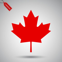 Maple leaf vector icon. Canada vector symbol maple leaf clip art. Maple leaf vector illustration.