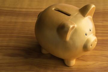 piggy bank saving concept