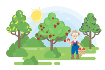 Man in garden. Senior farmer grow the trees with fruits.