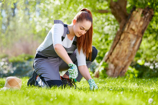 Young woman at garden work