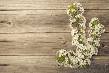 Branches of a flowering tree on wooden boards.