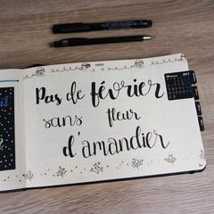 Carnet / agenda personnalisé. Lettering et calligraphie.