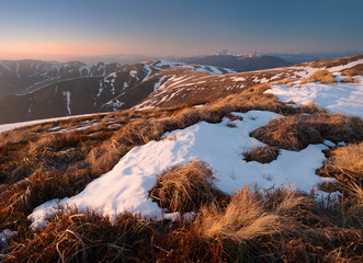 Spring on highlands. Carpathians, Ukraine