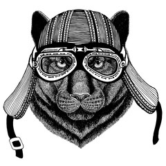 Panther Puma Cougar Wild catHand drawn image of animal wearing motorcycle helmet for t-shirt, tattoo, emblem, badge, logo, patch