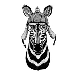 Zebra Horse Hand drawn image of animal wearing motorcycle helmet for t-shirt, tattoo, emblem, badge, logo, patch