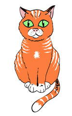 Cartoon image of cat. An artistic freehand picture.