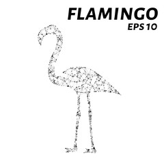 Flamingo consists of points, lines and triangles. The polygon shape in the form of a silhouette of a Flamingo against a white background. Vector illustration.