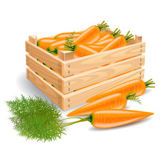 Box with carrots