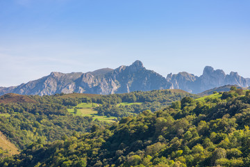 Crossing woodland and mountain pasture, to discover the nature of  the foothills of the National Park Los Picos de Europa. In the background, peaks of the famous limestone mountain range