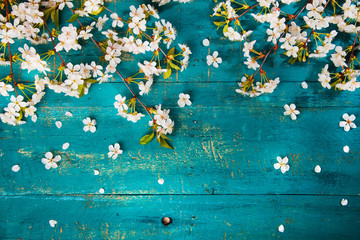 The concept in a romantic style on the wooden background. Cherry blossoms in the frame.
