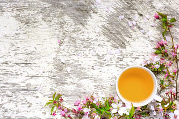 cup of green tea and branches of blossoming sakura and cherry