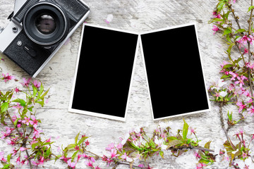 vintage retro camera, blank photos and spring flowers branches